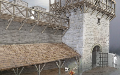Le Camp du Château sur Salins